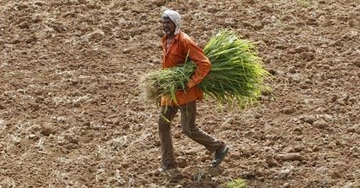 Taking care of farmers health