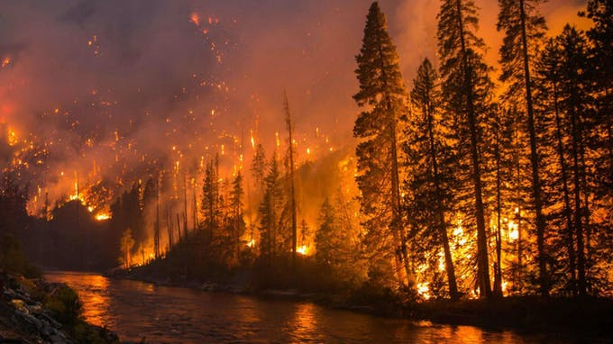 We have already seen the wildfires in California and Amazon forest. This can be notified as early as possible.