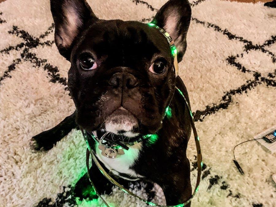 LED Light Strip Controlled by Amazon Alexa