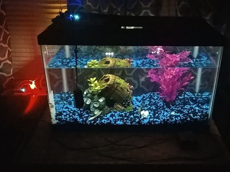 MEGR 3171 IOT Group 002 - Automated Aquarium Light