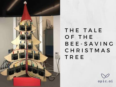 The tale of the bee-saving christmas tree