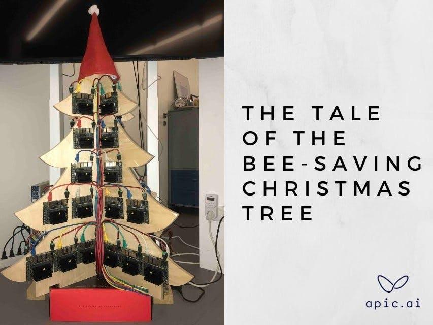The tale of the bee-saving christmas tree
