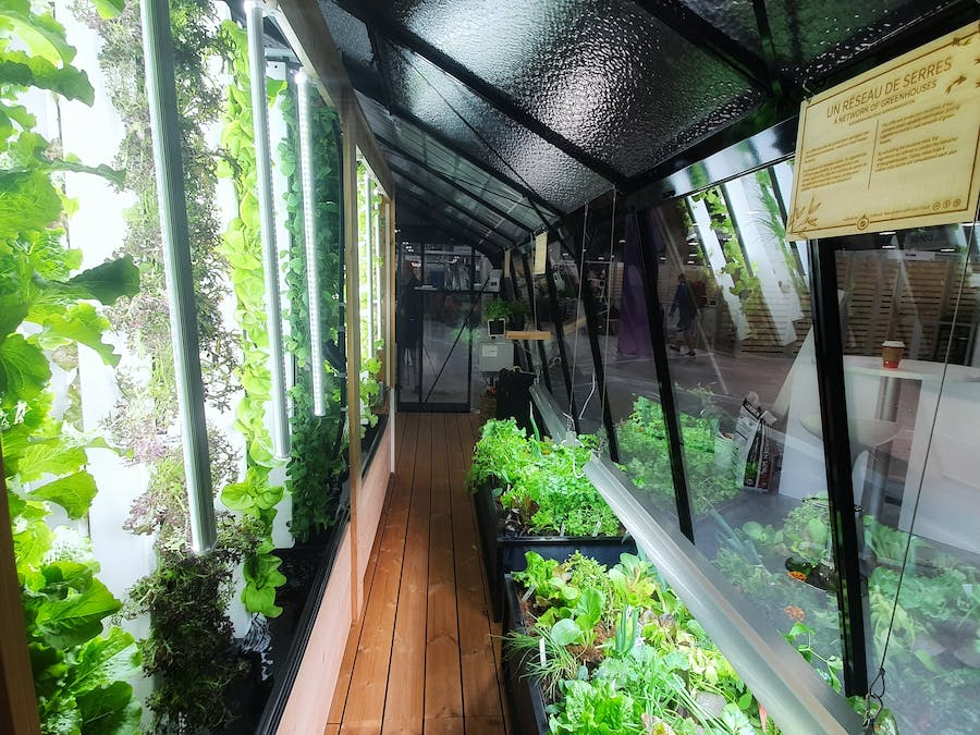 Solar Smart Greenhouse Using Vertical Aquaponic Towers