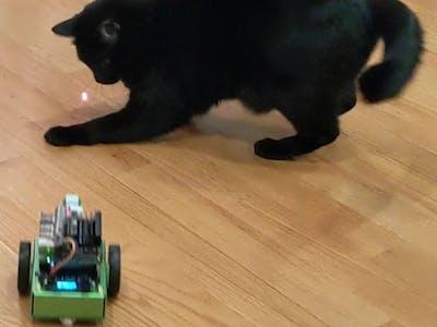 Autonomous Cat Bot