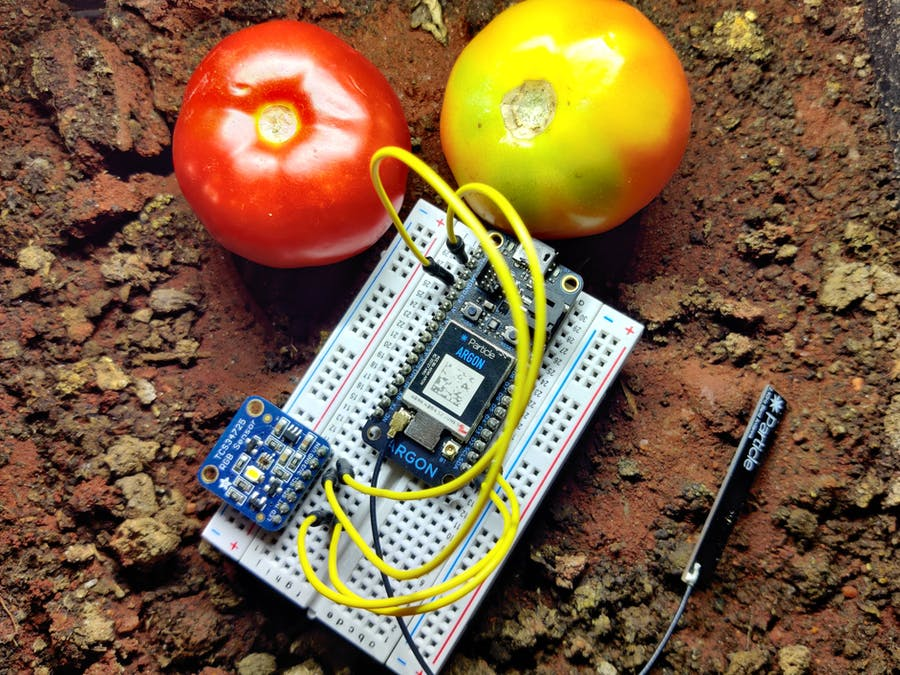 ML for Classification of Tomatoes Using Particle Argon