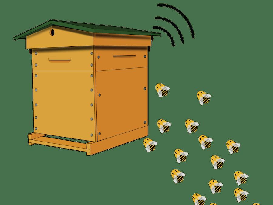 L'abeille vie