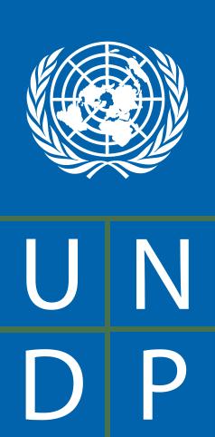 50011985-0-238px-UNDP-logo.svg.png