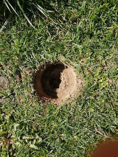 Dig a hole of a similar size to the box
