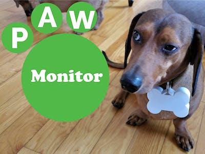 Paw Monitor
