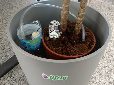 Agrumino, you are traveling and he is watering for you!!