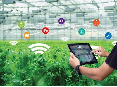 """""""Smartening"""" Agriculture"""