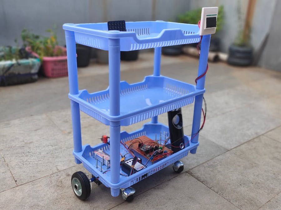 Low Budget Carriage Robot
