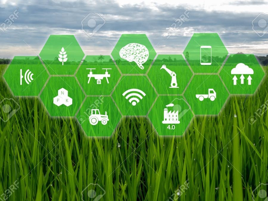 Smart Farm - The future of agriculture