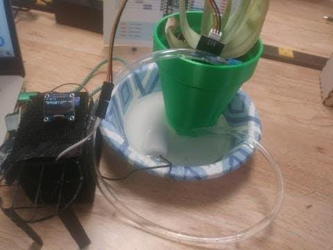 Self watering palnter