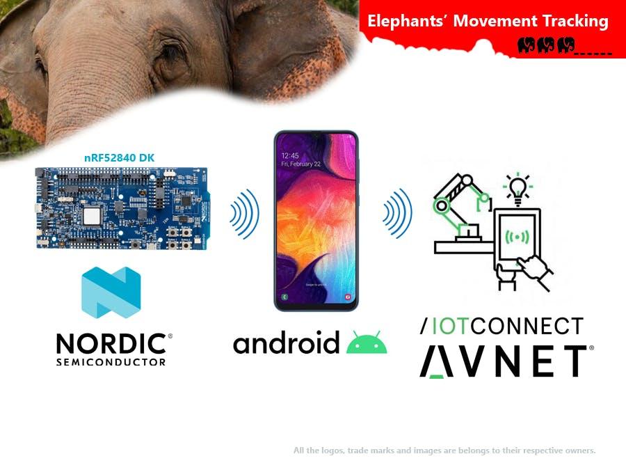 Elephants' Movement Tracking