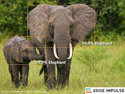 Image Classifier with EDEG IMPULSE