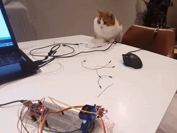 Arduino Cat laser toy DIY