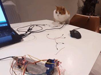 Arduino Cat laser toy DIY