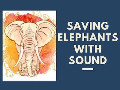 Elephant Behaviour Classification from Sound