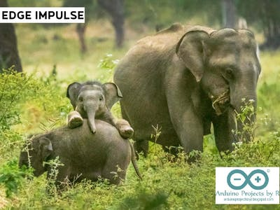 Prevent conflicts and protect Elephants with the help of AI