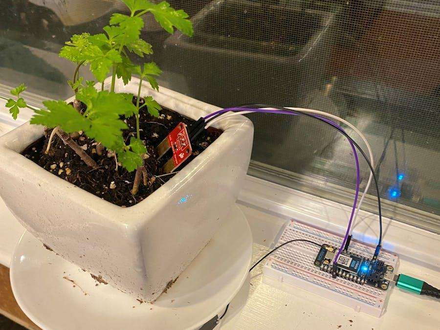 Plant Water Indicator