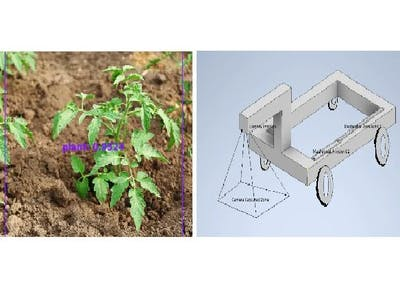 Automatic Weed Removal Robotic System