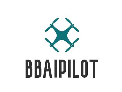 BBAI Pilot