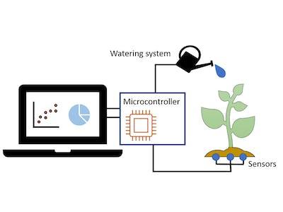 Comparing soil moisture sensors for smart irrigation systems