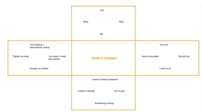 Figure 3: Overview of the Caretaker Profile