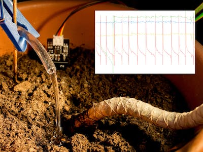 Automatic IoT Watering System inclusive Monitoring