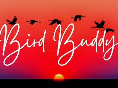 BirdBuddy