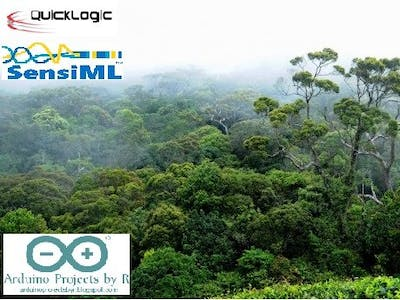 Protect Forests with AI