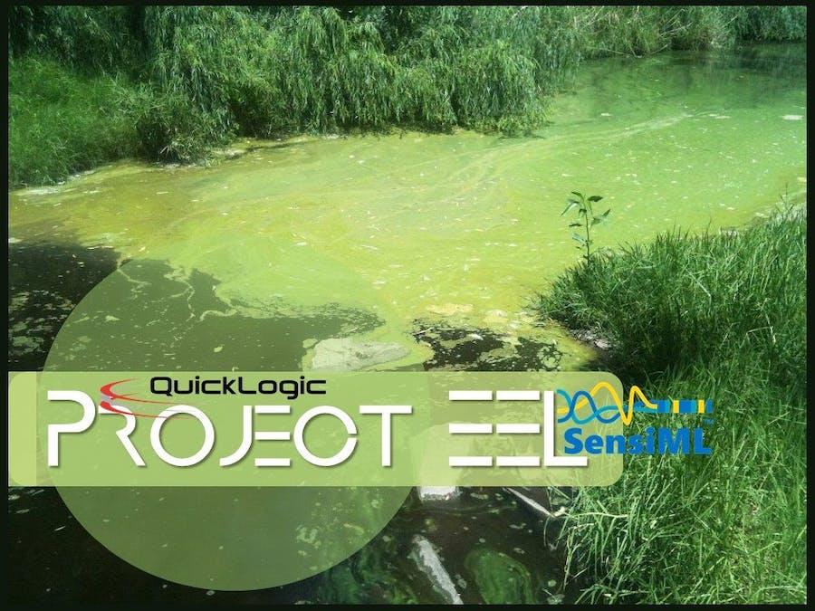 Project EEL