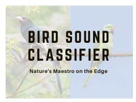 Bird Sound Classifier on the Edge