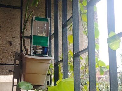 Bird Feeder using IoT alert