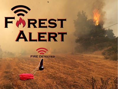 Early Forest Fire Detection System