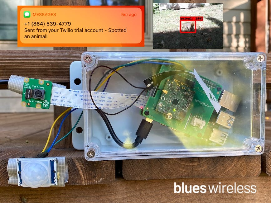 What's Destroying My Yard? Pest Detection With Raspberry Pi