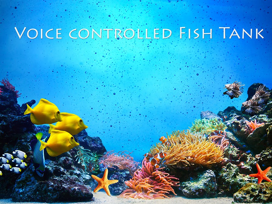 Voice Controlled Fish Tank