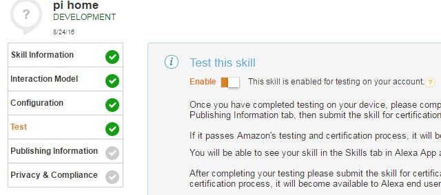 testing custom skill