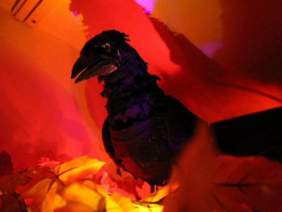 Talking Raven - Animatronic for Halloween