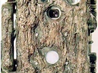 Trail Camera companion