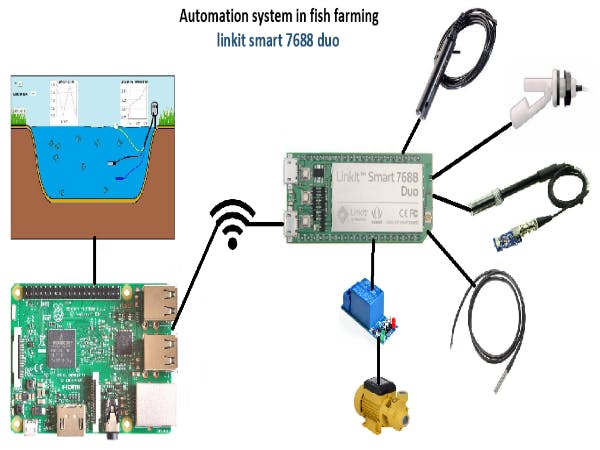Automation system in fish farming