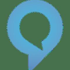 Amazon Alexa service