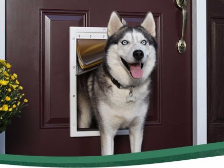 Doggy Door Security and Pet Tracker & Doggy Door Security and Pet Tracker - Hackster.io