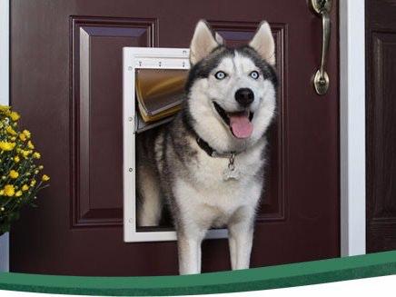 Doggy Door Security and Pet Tracker & Doggy Door Security and Pet Tracker - Hackster.io