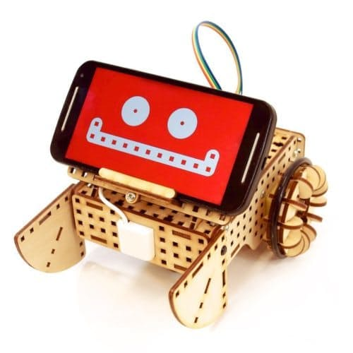 Smartphone head robot