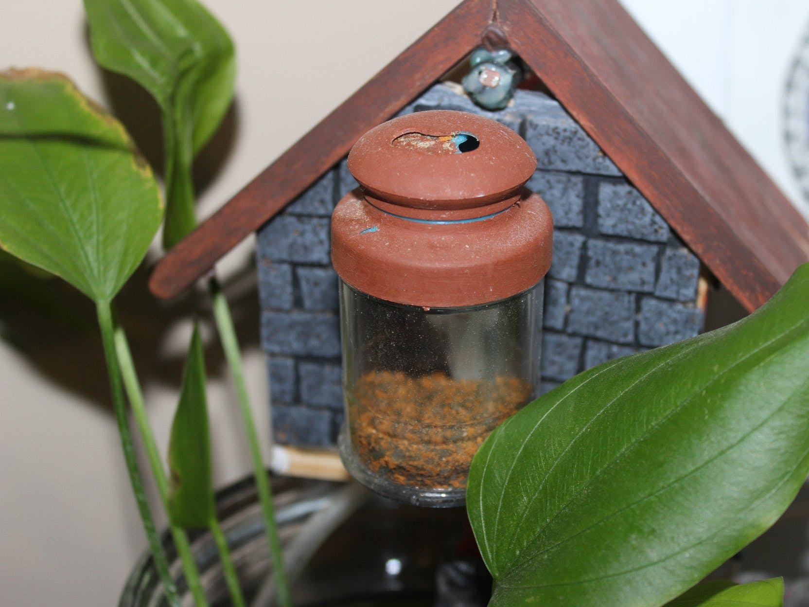 YAFF - Yet Another Fish Feeder