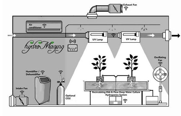 Typical Grow Environment and hydroMazing