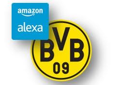 Ask Alexa for next BVB game