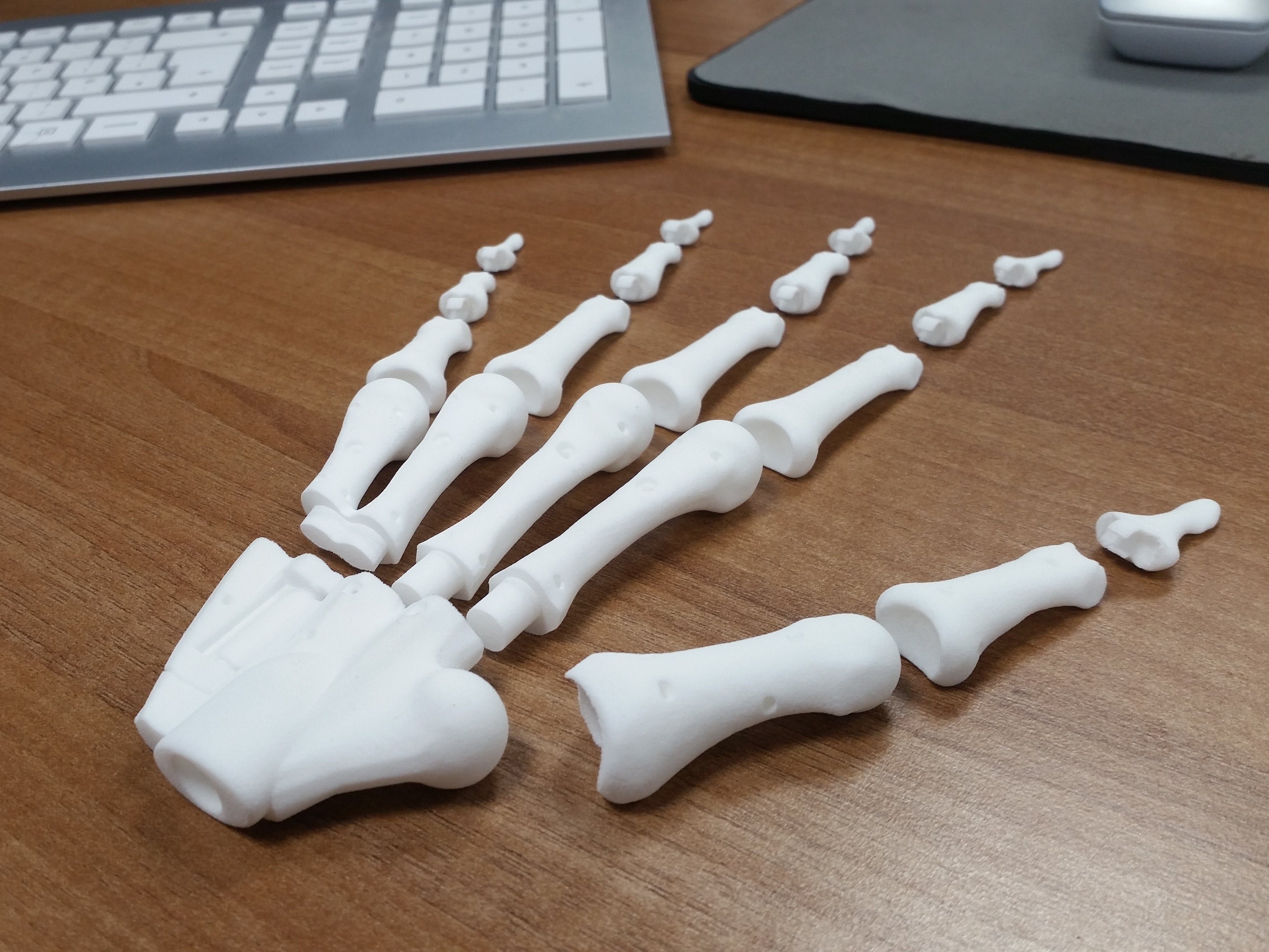 Bio-Mechanical Anatomical Hand Kinematics